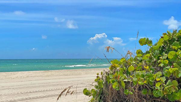 spiaggia luxury condos